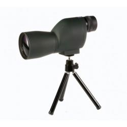 Fomei 20x50 Short FC