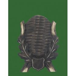 Prelov štítek srnčí pro seřízlou lebku  - 14x19cm