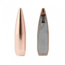 Hornady FMJ-BT 7,62mm 150grs